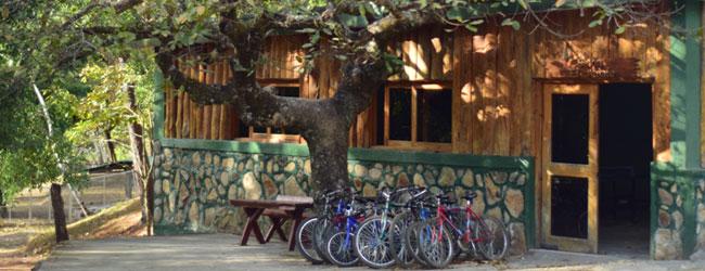 bici-montana-entrepinos