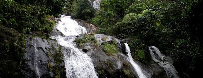 cascada-salto-golondrina